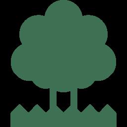 樹木葬墓地
